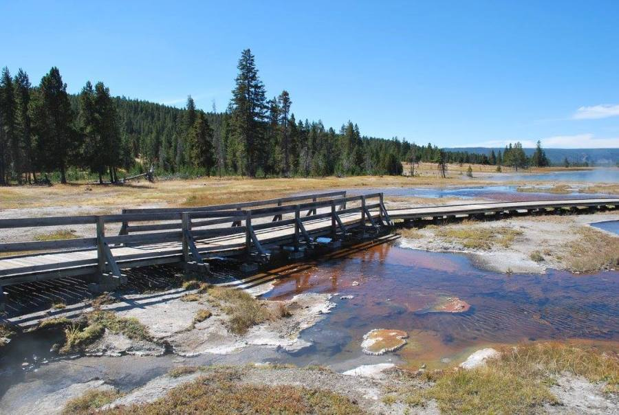 Bridge in the yellowstone park