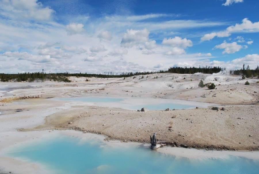 Wasteland of Yellowstone National Park