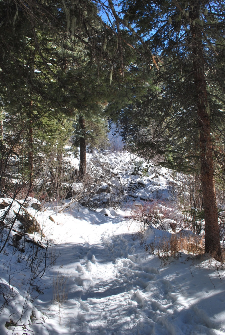 Hiking in Pagosa Springs in the winter