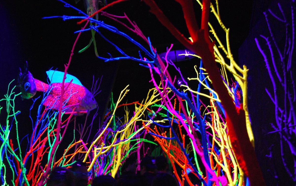 Meow Wolf neon