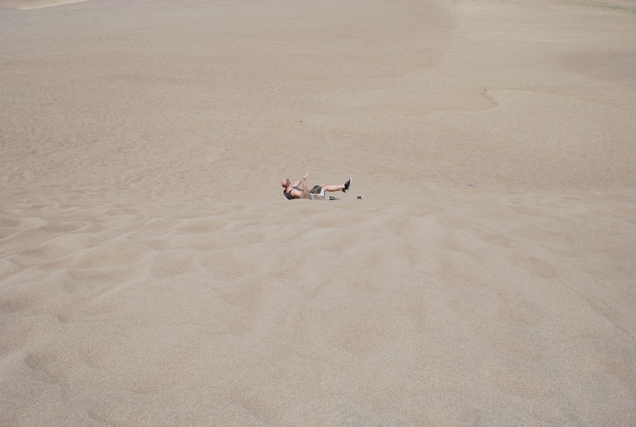 Sleds for Sand Dunes