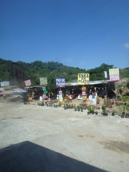 Along the route to Sayulita